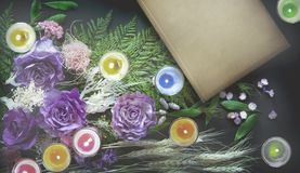 Book, colorful dried flowers. Stock Photo