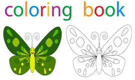 Book coloring. Vector, book coloring butterfly circuit stock illustration
