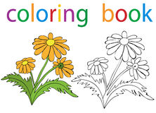 Book coloring Royalty Free Stock Photo