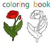 Book coloring. Vector, book coloring flower cartoon poppy vector illustration