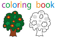 Book coloring. Vector, book coloring tree isolated vector illustration