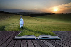 Book concept Concept landscape young boy walking through field a royalty free stock photo