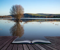 Book concept Mirror reflections of landscape in flood plains in Royalty Free Stock Image