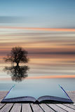 Book concept Silhouette of tree on calm ocean water landscape at Stock Photos