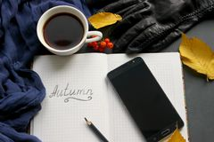 A book with a Cup of tea and a mobile phone surrounded by autumn leaves on a grey background stock photography