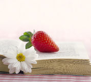 Book with a daisy flower and red strawberry Royalty Free Stock Photo