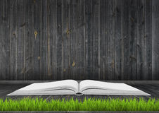 Book on dark wood floor with grass Stock Photography