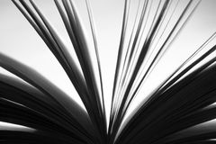 Book detail in black and white Stock Image
