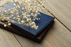 Book and dried flowers Royalty Free Stock Photos