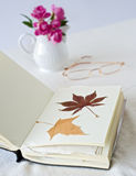Book with dry leaves. And glasses Royalty Free Stock Image