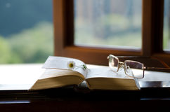 Book and eyeglasses. royalty free stock photos