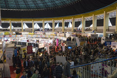 Book Fair. Bucharest, Romania – November 21, 2015: People at the Gaudeamus Book Fair at Romexpo in Bucharest, Romania Royalty Free Stock Image