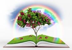 Book fantasy Royalty Free Stock Photos