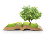 Book of fantasy stories. The book of fantasy stories Royalty Free Stock Photo