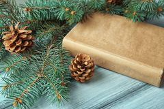 Book with fir tree and cones on   background. Book with fir tree and cones on wooden background Royalty Free Stock Images