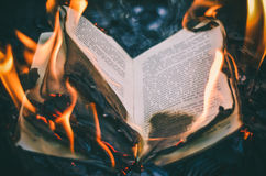 Book in the fire. Burning object, in the forest Stock Image