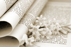 Book And Flower. Closeup of a book with flowers in it. Narrow Depth of field Stock Images