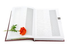 Book and flower Stock Image