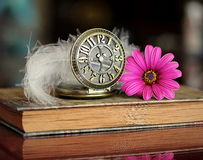 Book and flower. Book, flower, pocket watch and feather in artistic image Stock Images