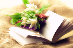 Book and flowers. Bright still life with book and flowers. Soft focus Stock Images