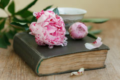 Book, flowers and cup on an old wooden table Stock Photo