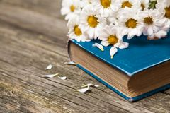 Book and flowers on wooden background Stock Image