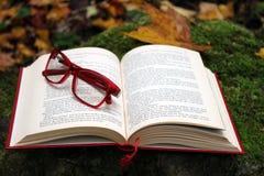 Book, Font, Glasses
