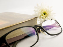 Book and glasses. White background Stock Image