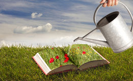 Book on the grass Stock Photos