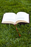 Book in the grass Royalty Free Stock Images