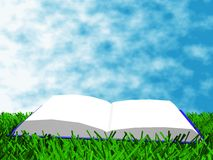 The book on the grass. Against a backdrop of sky Stock Photo