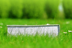 Book in grass. Stock Image