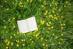 Book in the grass Royalty Free Stock Photos