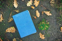 Book on the ground, covered in yellow maple and oak leaves. Back to school. Education concept. Beautiful autumn background. Picturesque composition. Weekend in royalty free stock images