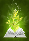 Book of ground magic Stock Image