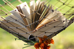 Book in a hammock nobody Royalty Free Stock Image