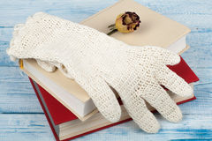 book, hardback books on wooden table, rose and white gloves knitted crochet Back to school. Copy space for text. Stock Image