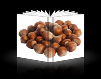 Book of hazelnuts. A book of hazelnuts over a black background Royalty Free Stock Image