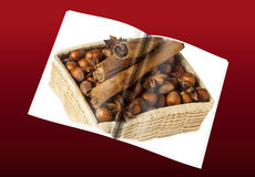 Book of hazelnuts. A book of  hazelnuts placed over a colorful background Royalty Free Stock Photography