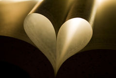 Book heart. Heart shape made of a book pages Stock Image