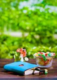 Book with heart, monpase, rakes and flowers on  table in garden Stock Photo