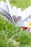 Book heart shape on grass, dept of field. Royalty Free Stock Photos