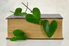 Book and heart shaped leaves Royalty Free Stock Images