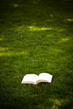 Book In The Grass Stock Image