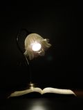 Book and lamp Royalty Free Stock Image