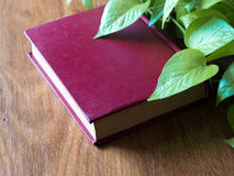 Book and leaves royalty free stock image