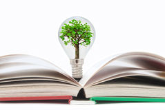 Book with light bulb tree Royalty Free Stock Image