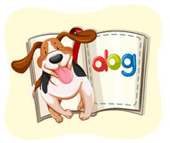 Book of little dog Stock Photography