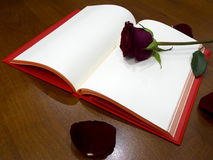 Book love Stock Images
