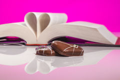 The Book of Love. Book of love isolated on pink background. Love inspired stories show that faith, forgiveness and hope have the power to lift spirits and change Stock Photography